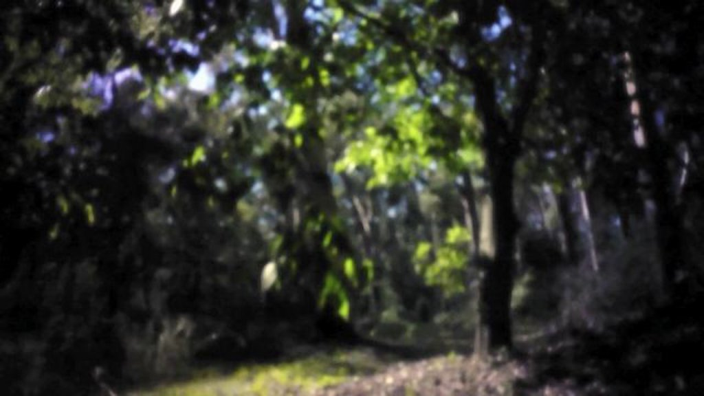 Pinhole Video #1